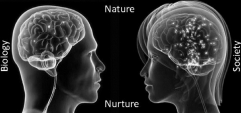 two heads represent biology & society with nature & nurture written between them